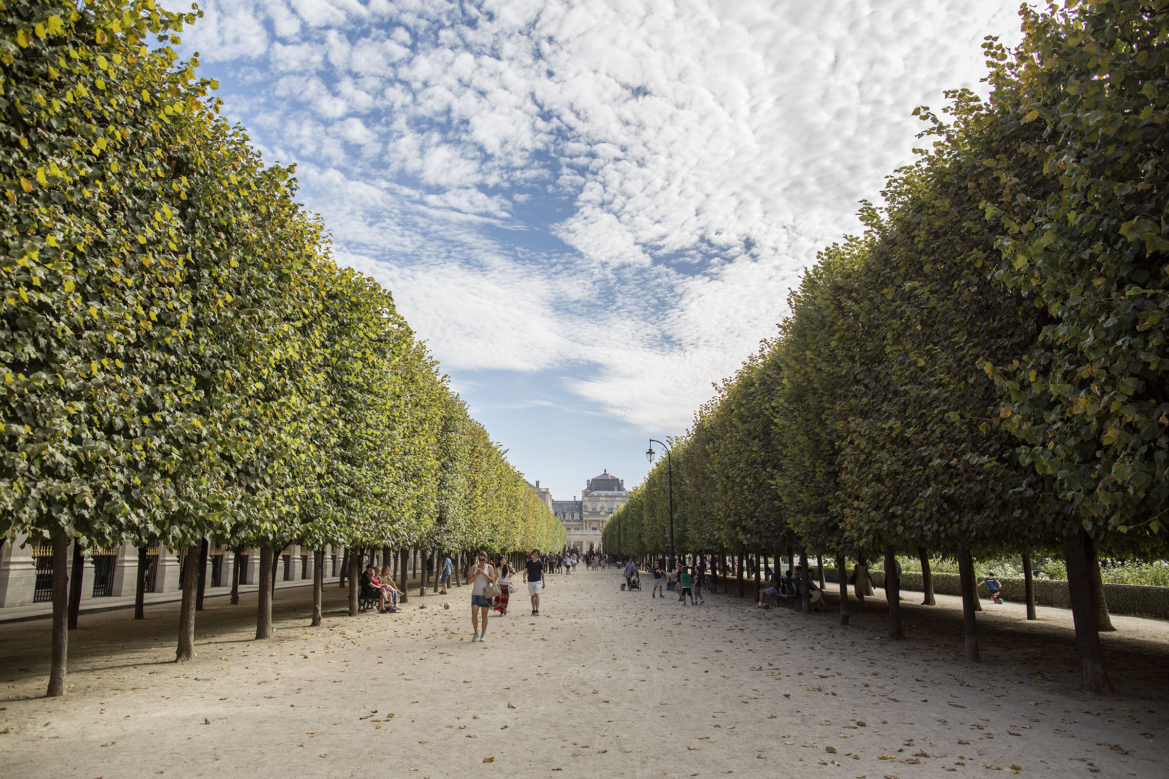 61/JARDIN PALAIS ROYALE/palais-royal-hand-in-paris.jpg